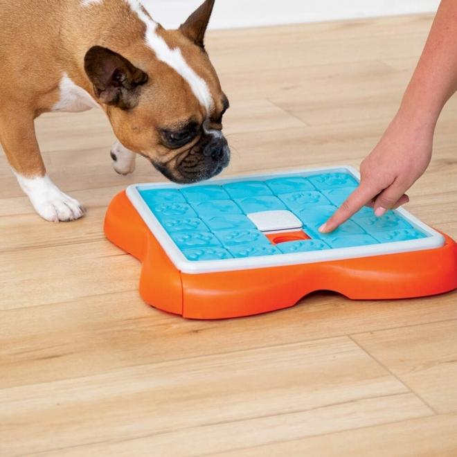 Nina Ottosson Dog Challenge Slider oranssi-turkoosi