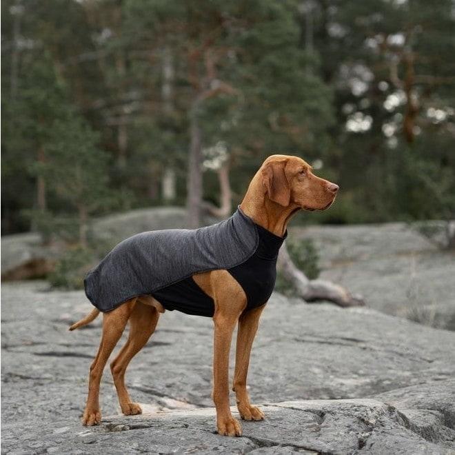 Koiran paita Feel Active Oslo harmaa