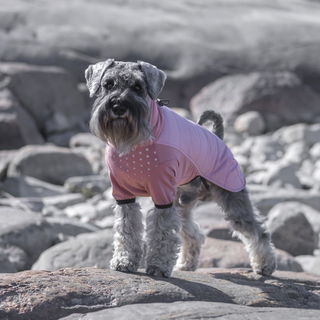 Koiran takki FA Stockholm, rosa