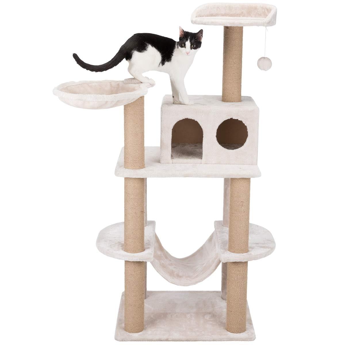 Kissan Raapimapuu