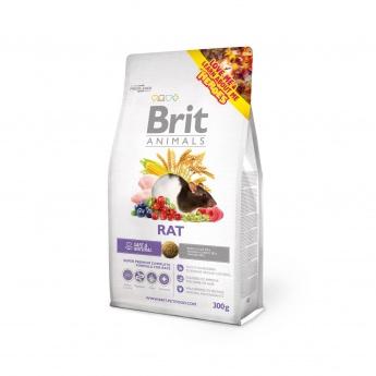 Brit Animals Rotte