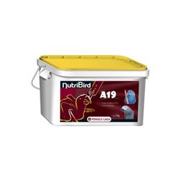 Handuppmatning A19