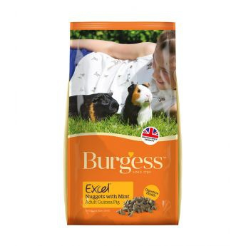 Burgess Excel Guinea Pig Adult with Mint