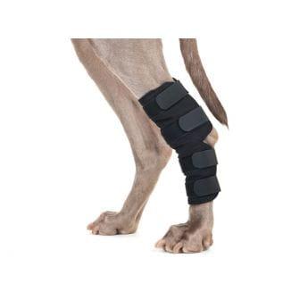 Back on Track Hasebeskytter til Hund Svart 2-pakk