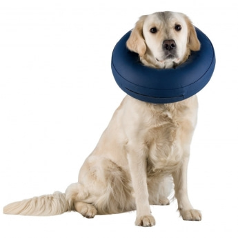 Hundekrage oppblåsbar