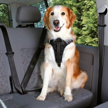 Trixie Dog Protect Bilsele