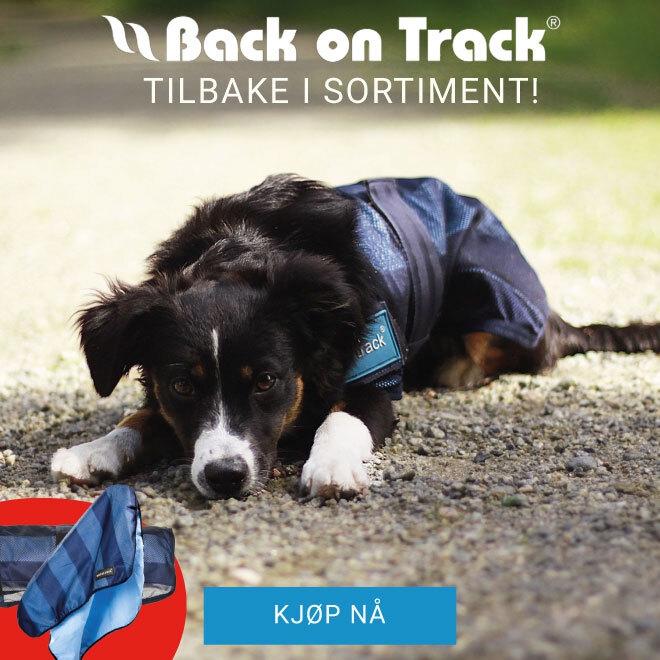 Back on Track - tilbake i sortimentet!