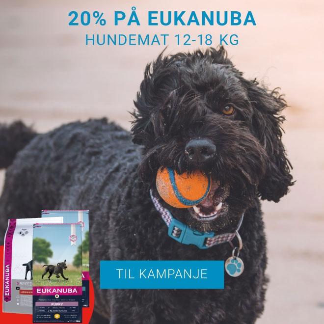 Vetzoo tilbud på mange gode produkter til ditt kjæledyr.