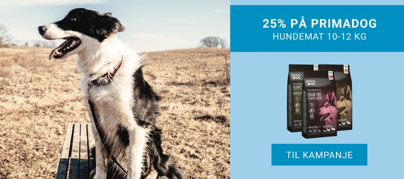 25% på PrimaDog Hundemat 10-12 kg