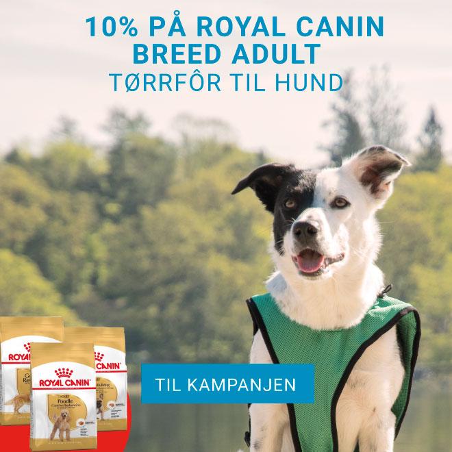 Kampanje på Royal Canin Breed Tørrfor til hund