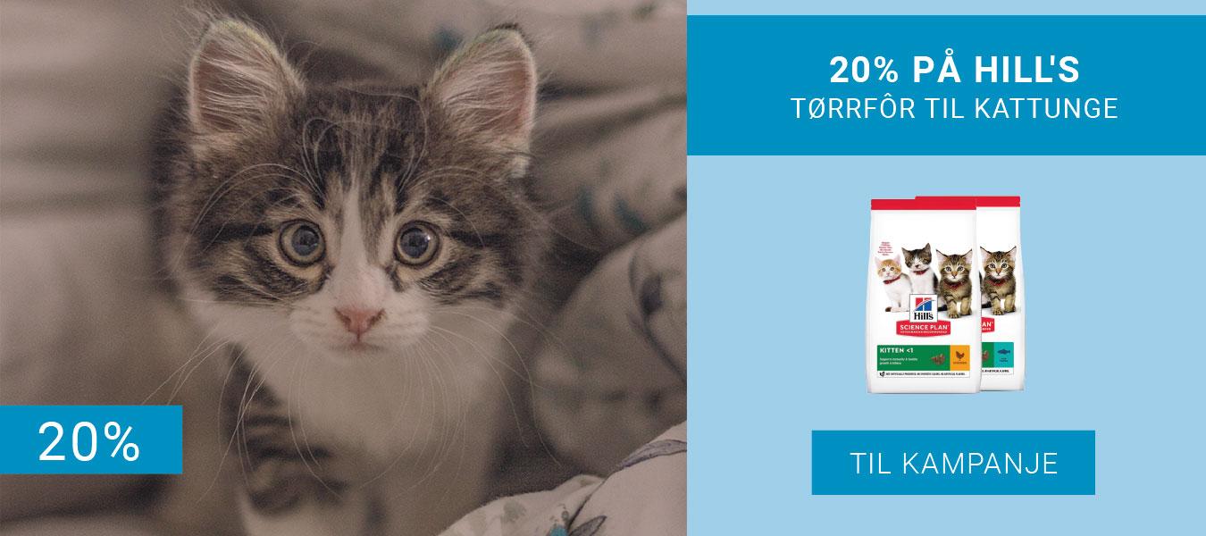 20% på Hills Torrfor til kattunge