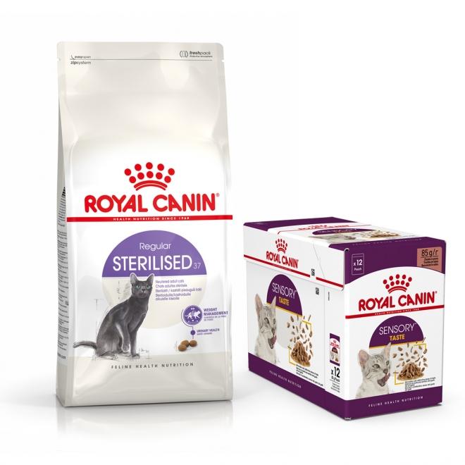 Royal Canin Sterilised Tørrfôr 10 kg + Royal Canin Sensory Taste Gravy Multipakke Våtfôr