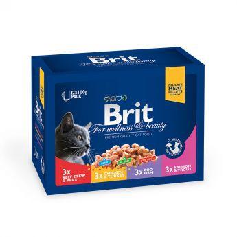 Brit Premium Multipack Fisk & Kött Bitar i Sås 12x100 g