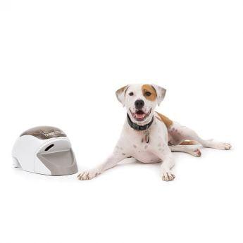 PetSafe Treat & Train Belöningsmaskin