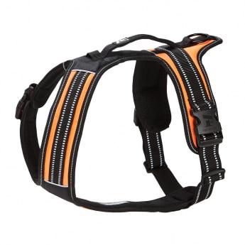 Feel Active Sport Sele Orange