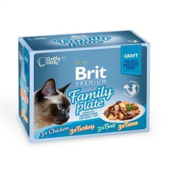 Brit Premium Pouches Fillets in Gravy Family Plate (12x85g)