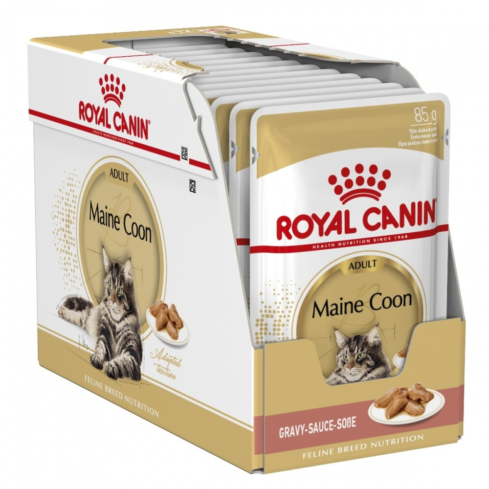 Royal Canin Maine Coon Wet (12x85g)