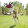 Flyer Frisbee