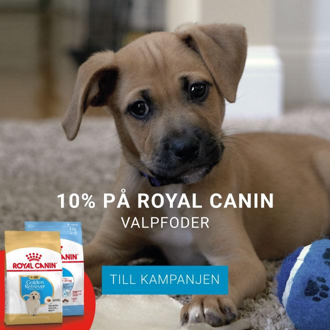 10% på Royal Canin Valpfoder