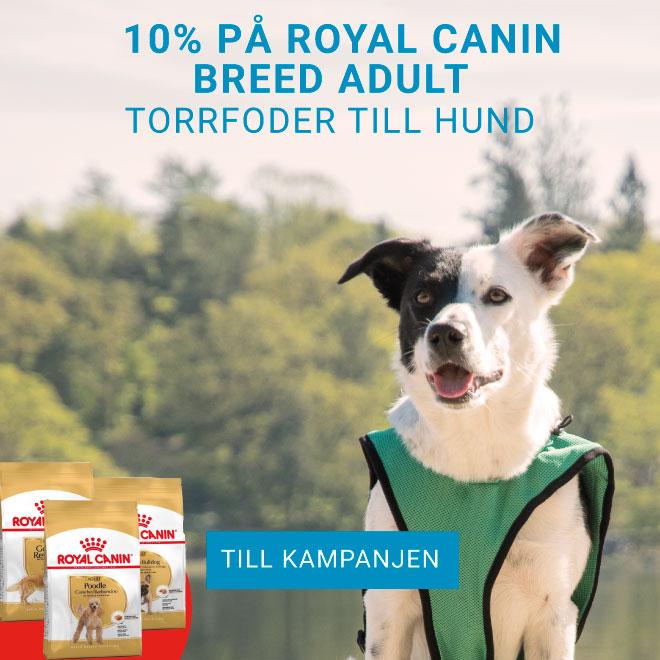 10% på Royal Canin Breed Torrfoder till hund