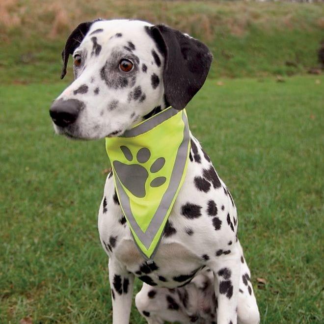 Säkerhetsscarf Med Reflex